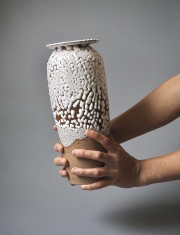 vase crawl
